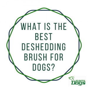 Best Deshedding Brush For Dogs: Shedmonster vs Furminator vs Furgopet