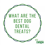 Best Dog Dental Treats: Whimzees vs Greenies vs Dentastix vs Merrick Fresh Kisses