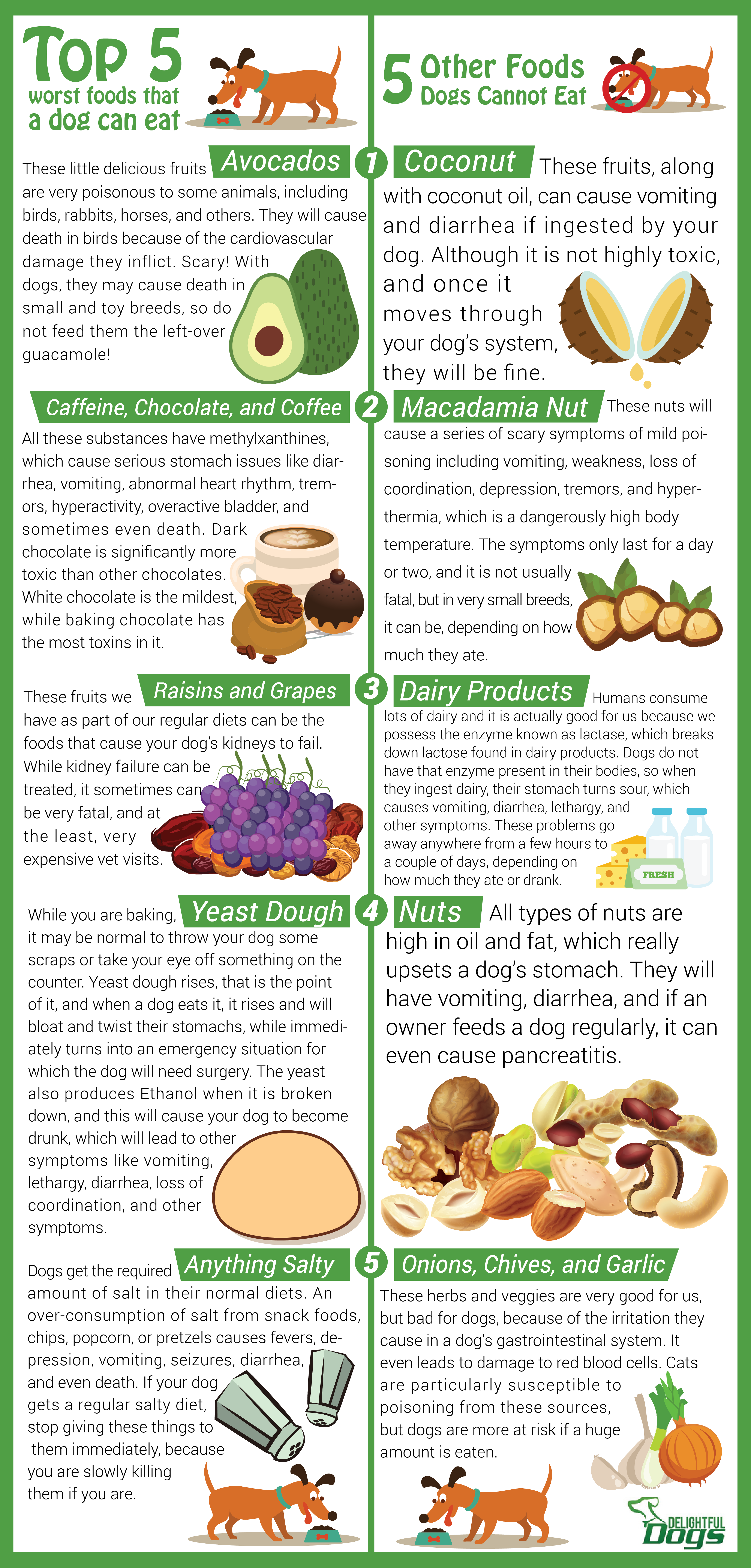 Infographic What Can Dogs Not Eat Delightful