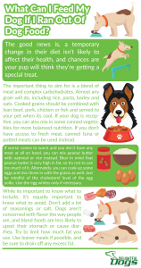 Infographic: What Can I Feed My Dog If I Ran Out Of Dog Food?