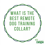 Best Remote Dog Training Collar: Dogtra vs PetSafe vs Sportdog 350 vs 425